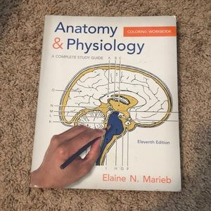 Anatomy and physiology work book!